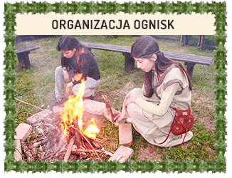 Organizacja ognisk